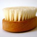 beautiful cleaning brush