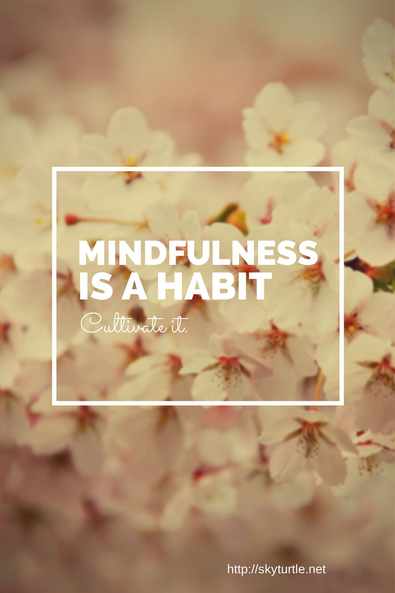 mindfulness is a bahit