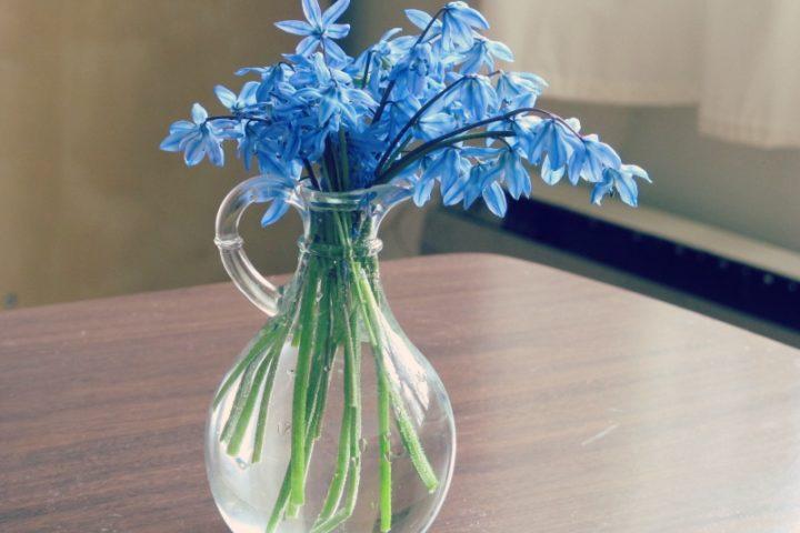 flower vase f