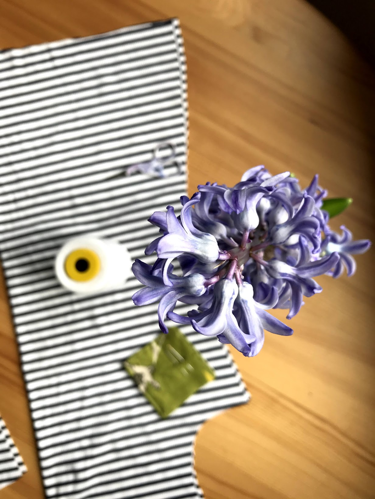 striped fabric with thread and purple hyacinth